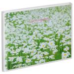 ハクバ Pポケットアルバム NP KG(ハガキ)サイズ 白い花畑