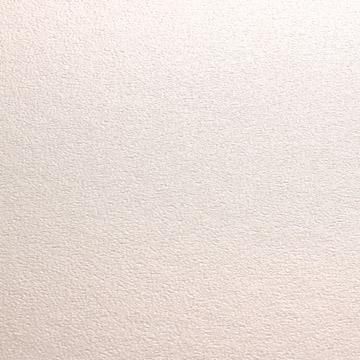 パール調の表紙