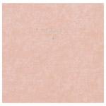 ハクバ スクウェア台紙 No.2020 6切サイズ 2面 ピンク