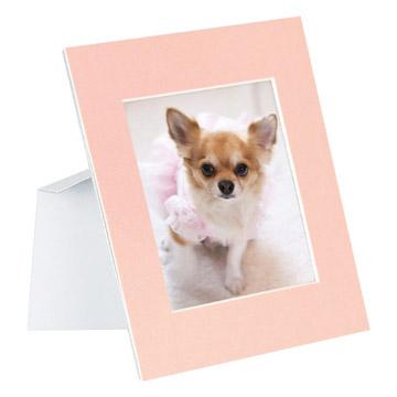使用例(写真はカラー:ピンクです)