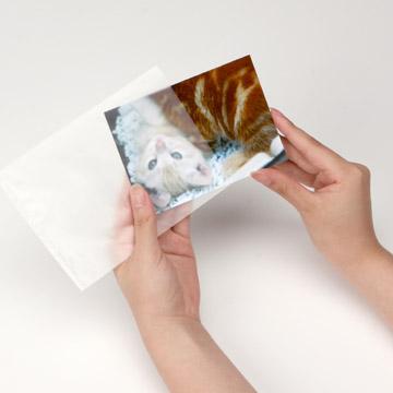 使用例:写真のほかにも切手などの湿気を嫌うものの一時保管としてご利用も可能です。