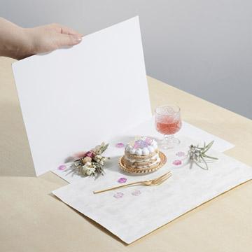 レフ板(反射板)として使える厚紙が付属